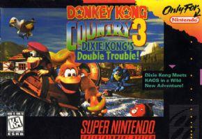 Donkey Kong Country 3 (Se...