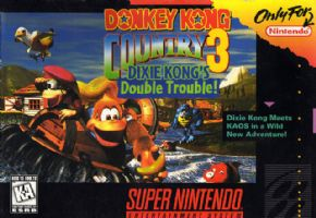 Donkey Kong Country 3 Sup...