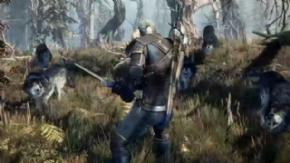 Foto The Witcher 3 Wild Hunt XBOX ONE