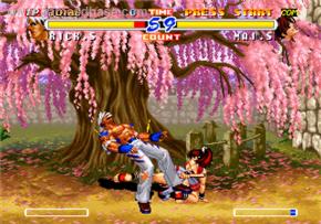 Foto Fatal Fury 2 Neo Geo AES
