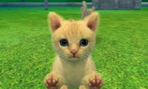 Foto Nintendogs + Cats: Toy Poodle & New Friends (Seminovo) 3DS