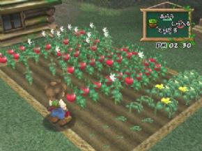 Foto Harvest Moon A Wonderfull Life (Seminovo) Game Cube